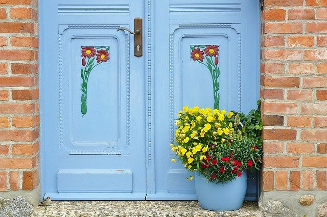 plants for front door entrance