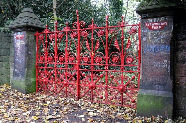 Innovative Fence Design - Wrought iron fence