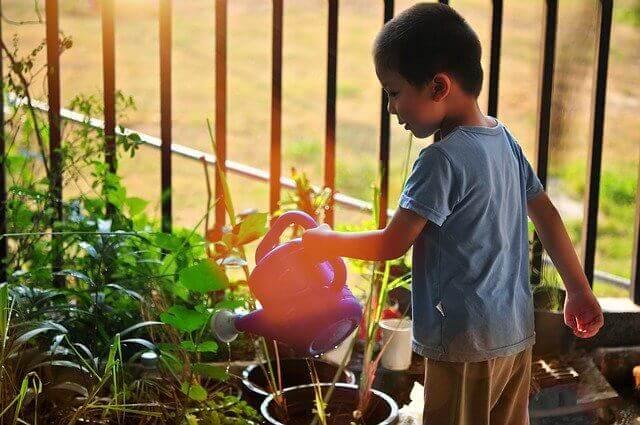 Benefits of Gardening For Children - sensory abilities